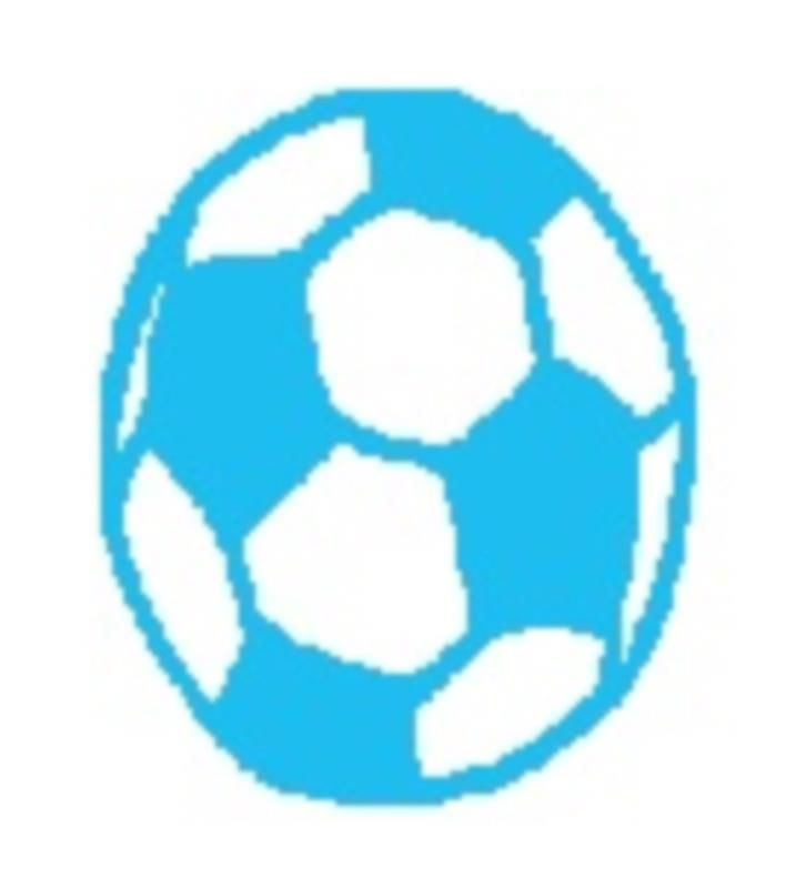 Wee Target (soccer ball) | Premmie to 2