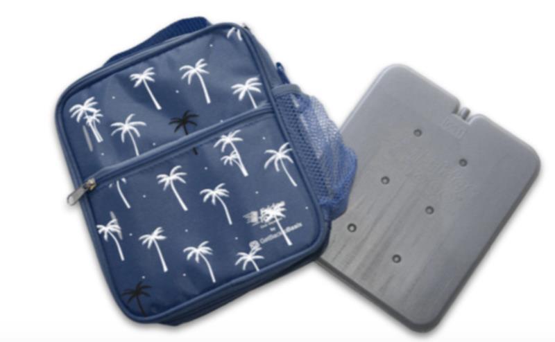 Fridge to Go Lunch Box Med Palm